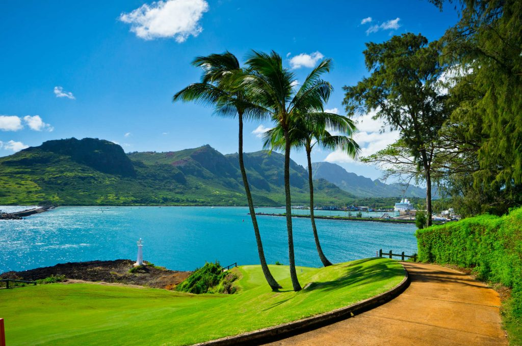 Hawaii HD Wallpaper New tab Theme